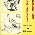 Spanking Book Cover 4